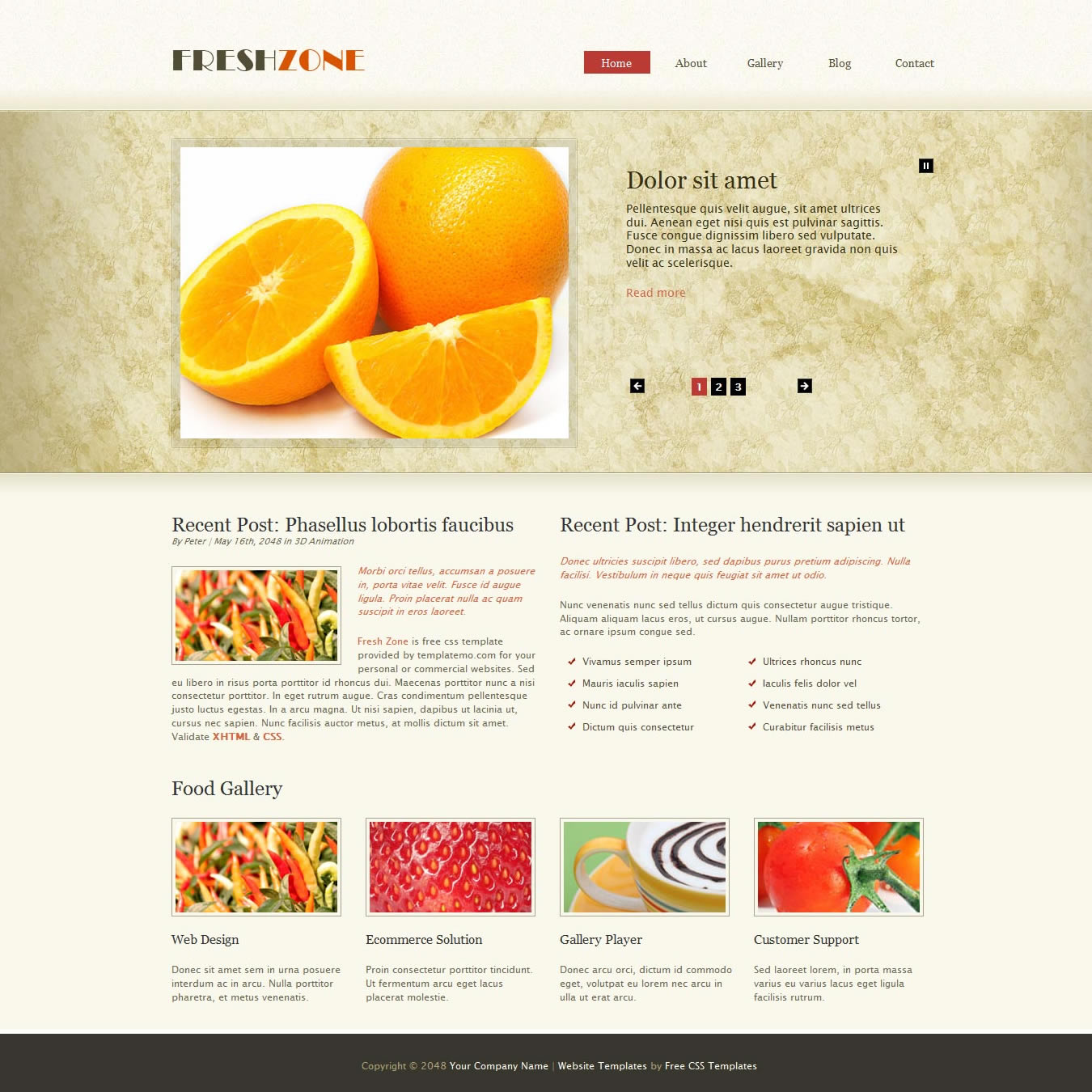 Fresh Zone Free CSS Templates