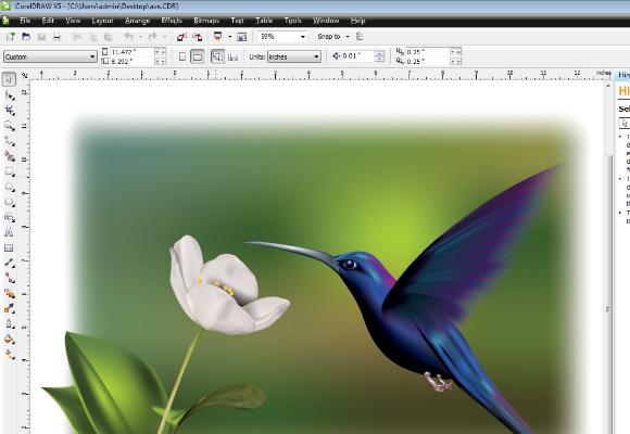 Adobe Illustrator Alternative