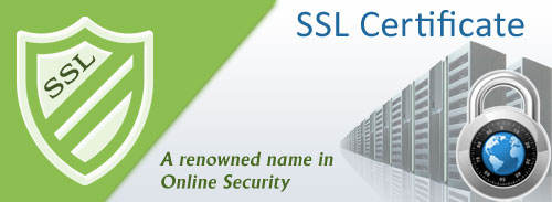 Protect your Online Deals with SSL Security